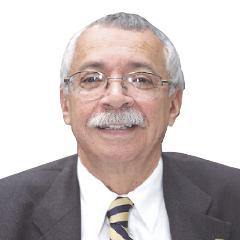 Los tiempos mexicanos  de David Ibarra