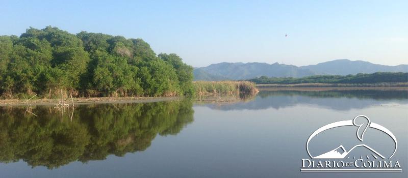 La Conafor y el Ayuntamiento de Armería trabajan en un proyecto que se iniciará el próximo año, para recuperar el estero Palo Verde.